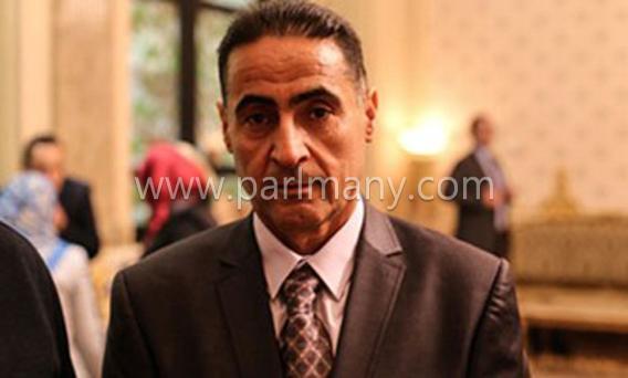 إبراهيم-القصاص-عضو-لجنة-الدفاع
