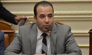 النائب أحمد بدوى