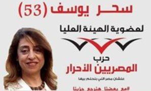 عضو الهيئة العليا للمصريين الأحرار : موقف النواب سيختلف بعد انتخابات مجلس الأمناء
