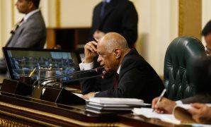 بالصور.. ردود فعل النواب أثناء التصويت على قانون العلاوة الخاصة بالبرلمان