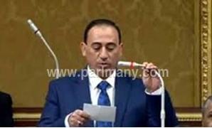 محمد زين الدين عضو مجلس النواب