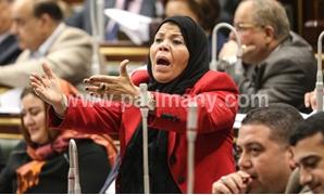 شادية خضر عضو مجلس النواب
