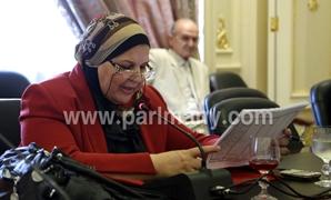 مايسة عطوة عن وضع منظمة العمل الدولية مصر بالقائمة السوداء: نحن فى حالة حرب ولن نتأثر بفزاعة القائمة