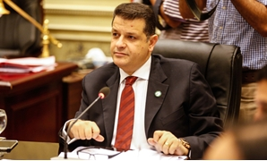 طارق رضوان عضو مجلس النواب