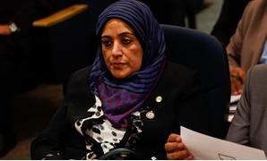 ثريا الشيخ عضو لجنة الشئون الاقتصادية بمجلس النواب