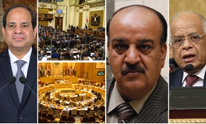 أحمد رسلان: مصر فى قلب العرب