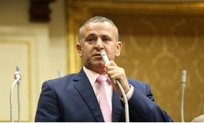 النائب فوزى الشرباصى عضو مجلس النواب