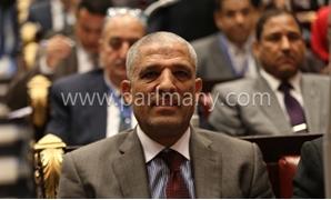 النائب محمد الحسينى