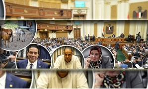 """البرلمان يواجه""""الكلاب الضالة"""""""