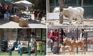 """حديقة الحيوان تتزين لاستقبال زوارها فى """"شم النسيم"""""""